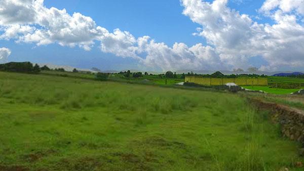 Terreno en El Roble 05